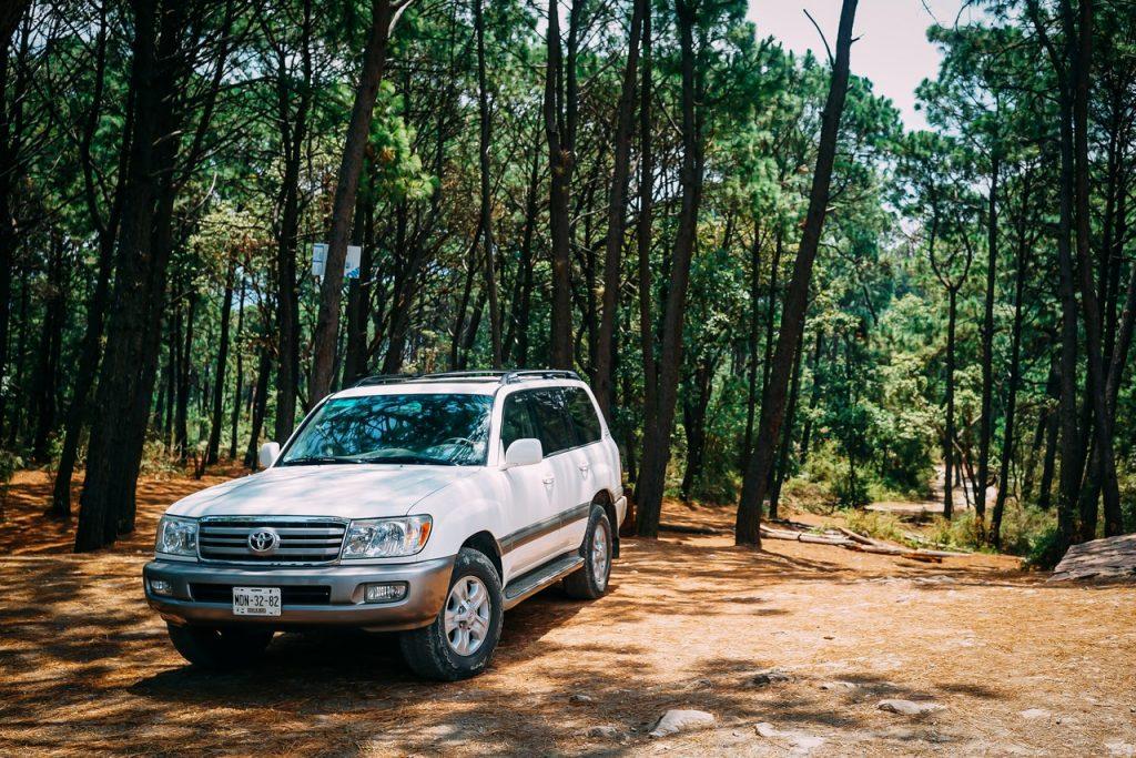 4x4 tout terrain blanc en forêt sur un chemin