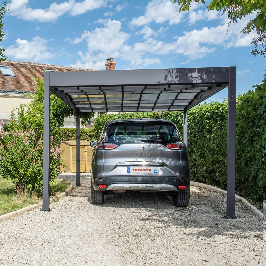 Voiture Renault sous un Carpot